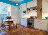 Europäische Moderne Küche-Kabinett und Küchenmöbel