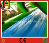 Tropitalの森林主題プールが付いている膨脹可能な水スリップのスライド