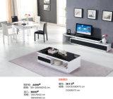 Mobiliário de TV Stand de Design Simples (057)