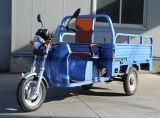 triciclo elétrico da carga do motor 1000W sem escova com a caixa aberta da carga