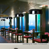 Alimentación Zhonshan moderno interior simple lámpara colgante colgante decorativo para