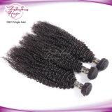 Cabelo humano natural da cutícula cheia Kinky Mongolian do cabelo Curly