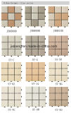 屋外の陶磁器の床のDeckingのタイル