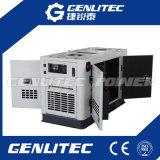 Молчком тип дизель генератора 20kVA AC трехфазный