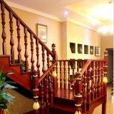 Home Staircase Fabricante Escadas em espiral em madeira (GSP16-005)