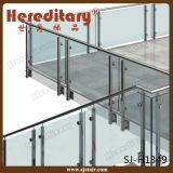 Balaustra dell'interno dell'acciaio inossidabile con le inferriate di vetro