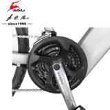 """CE белый 26"""" горного стиля алюминиевая передняя вилка E-велосипеды (JSL037D-8)"""