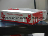 Il contenitore di frutta di Corflute con Printing/PP che piega Box/PP ha ondulato la casella con stampa trattata corona/tagliare
