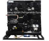 Halbhermetische kondensierende Geräte für Kühlraum oder Kaltlagerung