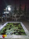 Lâmpada solar de Wall Street do jardim ao ar livre elevado do diodo emissor de luz dos lúmens