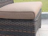 고리 버들 세공 가구 옥외 식탁은 등나무 의자 0051 10mm 반달 곡선 편평한 고리버들 세공 및 5mm 둥근 고리버들 세공으로 놓았다