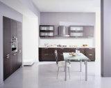 De Moderne Keukenkasten van het Project van Noord-Amerika