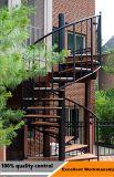 競争価格の屋内カスタムステンレス鋼のガラス螺旋階段