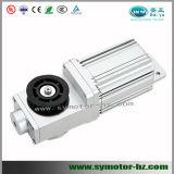 60 Watt, 24V, 3000rpm Brushless Motor Tür
