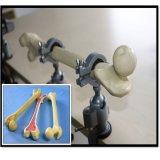 整形外科の腿骨のトレーニングのための練習の骨モデル