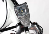 Chinese kleine 36V 250W zwarte elektrische vouwende fiets 20inch