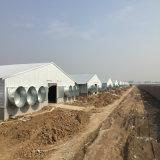 중국 고품질 닭 농가 환기 팬