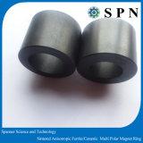 Permanet 세라믹 알파철 에어 컨디셔너를 위한 다극 고리 자석