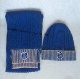 100%Acrylicは暖める編む帽子及びスカーフ(JYB354)を