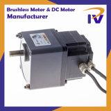 Постоянный магнит IEC Class 2 Бесщеточный двигатель BLDC щеткой или постоянного тока для насоса