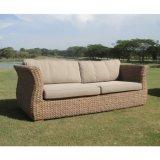 Salones al aire libre de los sofás de la rota