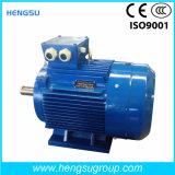 Электрический двигатель индукции AC Ye3 1.5kw-2p трехфазный асинхронный Squirrel-Cage для водяной помпы, компрессора воздуха