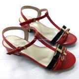 Новые сандалии High-Heeled ботинок повелительниц лета способа типа