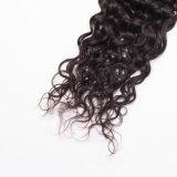 Pelucas naturales rizadas malasias del frente del cordón del color del pelo humano de la Virgen