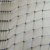 庭のプラスチックゆがみによって編まれる鳥の霧のネット