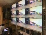 49 '' 1080P 3X3 LCD Panel-Abwechslung LCD-videowand für Monitor