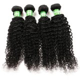 Trama di trama dei capelli ricci di colore naturale dei capelli del Virgin del brasiliano di prezzi all'ingrosso 100% della fabbrica piccola