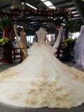 Aoliweiya último projeto Color vestido de noiva 110116