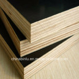 Shuttering /Marine /Waterproof /Concrete Formwork Film Faced Plywood for Construction
