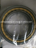 Rodamiento de rodillos cilíndrico del rodamiento de rodillos de Nj NU Nup de la marca de fábrica de SKF