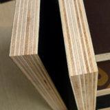 건축 건축재료는 합판 필름에 의하여 직면된 합판, Formwork 합판을 입혔다