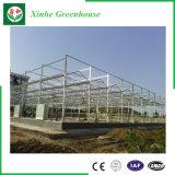 Estufa do policarbonato da extensão da agricultura de China multi