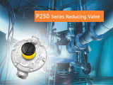 Regolatore di pressione del gas P250