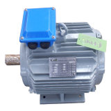 低いRpmのPmsgの永久マグネット同期発電機、ハイドロ低速永久マグネット交流発電機5kw 50kw 5MW