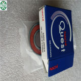 Gute Qualität NACHI, die 6002 Nse 6002-2nse9 trägt