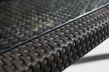Сад алюминиевой рамки PE-Ротанга напольный обедая комплект с стулом & таблица 8-10persons