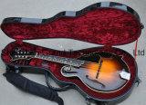 Las cadenas de 8 F5 La mandolina guitarra eléctrica con Ébano Fretboard (QT-F5).
