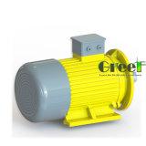 4kw 600rpm magnetischer Generator, 3 Phase Wechselstrom-permanenter magnetischer Generator, Wind-Wasser-Gebrauch mit niedriger U/Min
