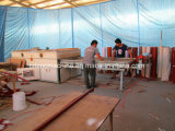 Máquina que lamina de la chapa del vacío de la prensa de madera de la membrana