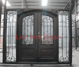 집을%s 최신 판매 아름다운 니스 외부 철 문