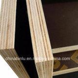 Comercio al por mayor de 15mm película negra enfrenta la madera contrachapada/encofrados de madera contrachapada de