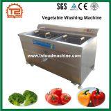 Máquina de lavar automática da fruta e verdura com preço de fábrica
