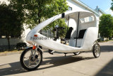 Design allemand Velo Taxi Electric Pedicab 48V (300K-06)