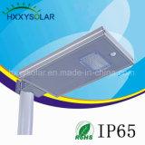 Luz solar impermeable del jardín de 12W LED con el nivel IP65