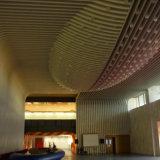 Panneaux en aluminium de nid d'abeilles pour la décoration de mur rideau/décoration de plafond
