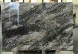 イタリアのベニスブラウンの灰色の大理石